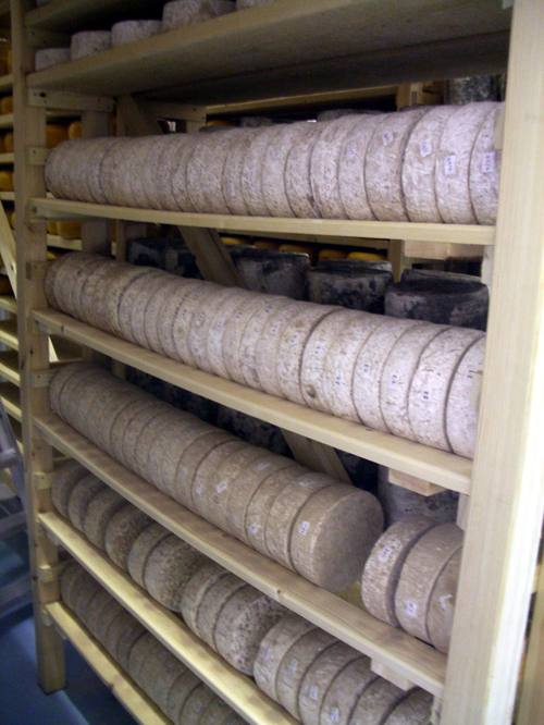 Cheese aging in the Marble Arches facility
